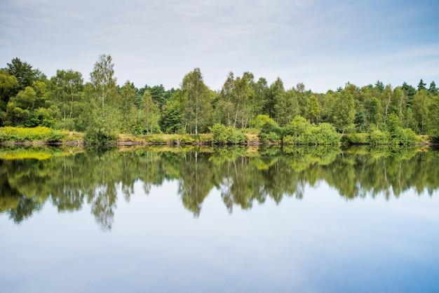 Klarer waldsee im nationalpark