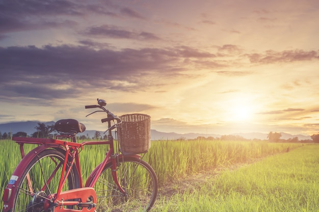 Klassisches fahrrad der roten japan-art am grün