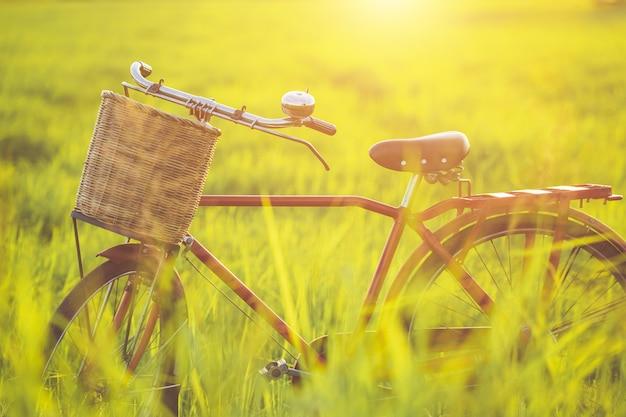 Klassisches fahrrad der roten japan-art am grünen feld