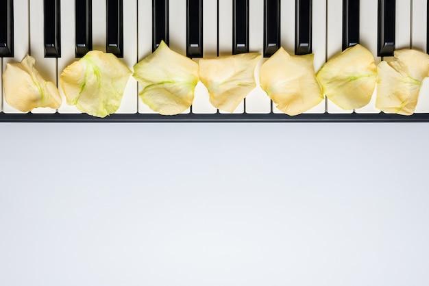 Klavierschlüssel mit den weißen rosafarbenen blumenblumenblättern, lokalisiert, draufsicht, kopienraum.