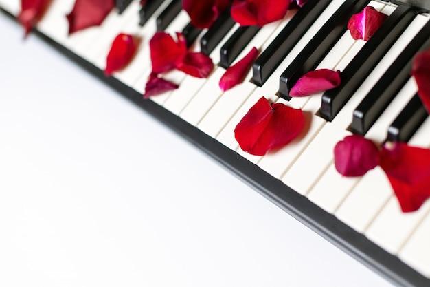 Klaviertasten bestreut mit den rosafarbenen blumenblättern, getrennt, kopieren sie raum.
