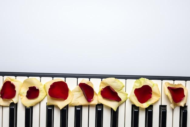 Klaviertasten mit den roten und weißen rosafarbenen blumenblumenblättern, lokalisiert, draufsicht, kopienraum.