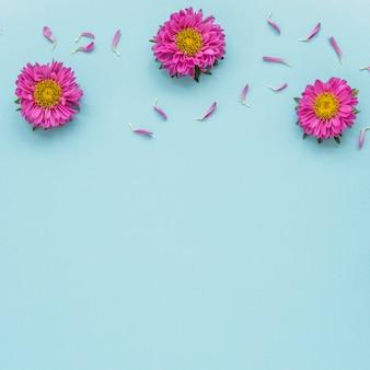 Kleine blütenblätter in der nähe von hellen blüten