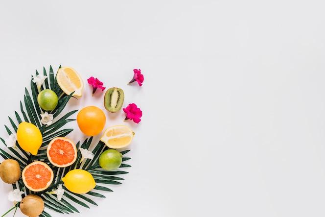 Kleine blumen in der nähe von zitrusfrüchten und blättern