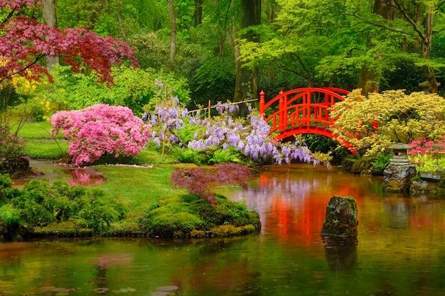 Kleine brücke im japanischen garten, park clingendael, den haag, niederlande