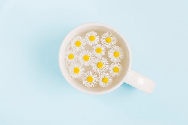 Kleine gänseblümchenblumen in einer tasse