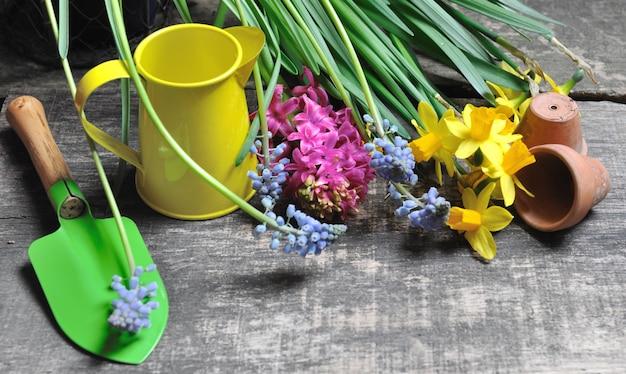 Kleine gartengeräte und frühlingsblumen