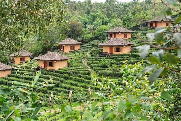 Kleine hütte in mae hong son teeplantage