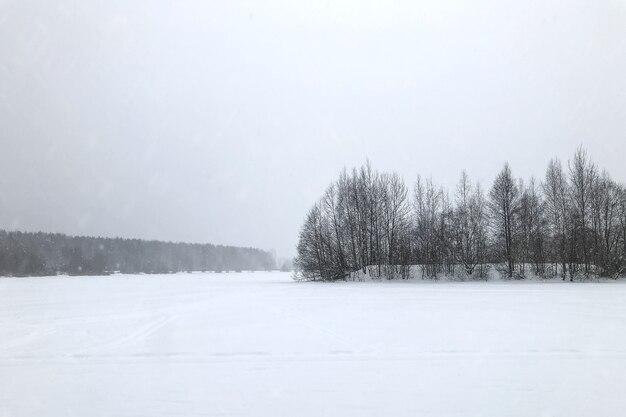 Kleine insel mit blattlosen bäumen in der mitte eines schneebedeckten sees während einer minimalistischen schneefallwinterlandschaft