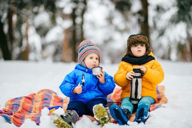 Kleine jungen haben picknick im winterwald. jungen, die tee von der thermosflasche im schneebedeckten wald trinken.
