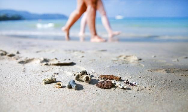 Kleine korallen liegen an einem sandstrand, die leute laufen an einem sonnigen tag im hintergrund?