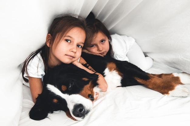 Kleine mädchen im bett mit hund berner sennenhund, freundschaft