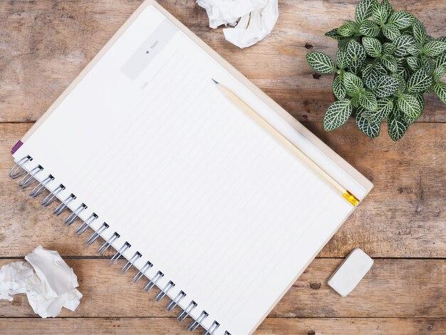 Kleine pflanze, notizblock und zerknittertes papier
