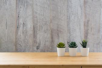 Kleine Pflanze von Succulents in den weißen Töpfen auf dem Schreibtisch gegen hölzerne Wand