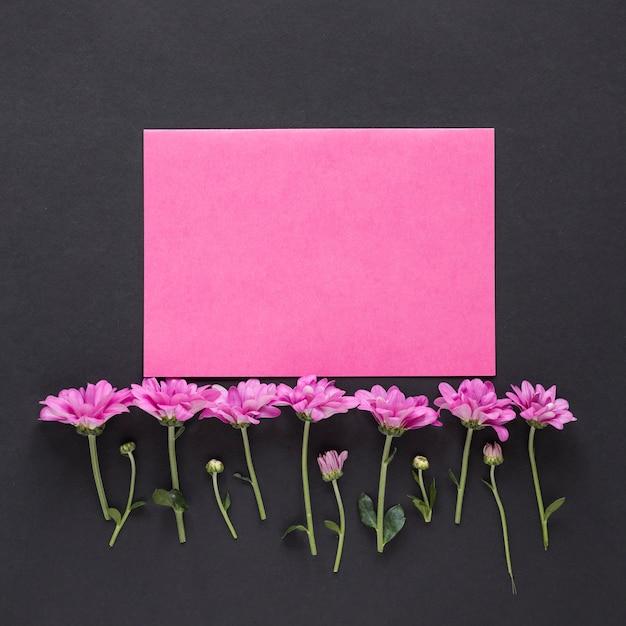 Kleine purpurrote blumen mit papier auf schwarzer tabelle