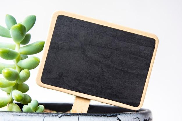 Kleine schwarze kreidetafel in einem topf mit sukkulenten zur inschrift in weißen buchstaben. geschäftskonzept, stabiles wachstum, agronomie, hausblumen