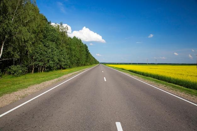 Kleine straße mit asphalt bedeckt. foto nahaufnahme im sommer. blauer himmel im hintergrund