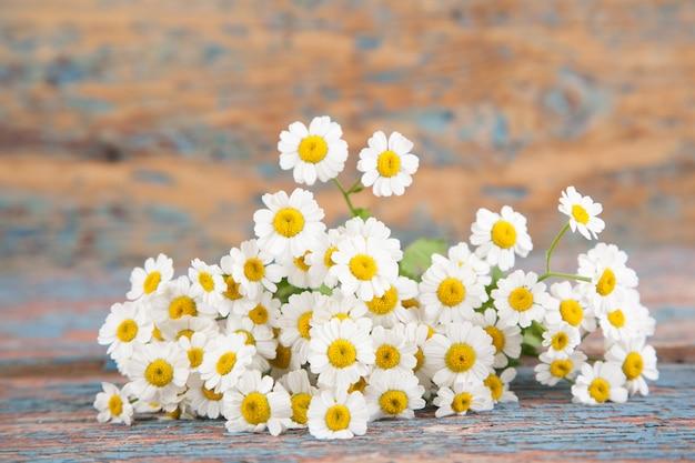 Kleine weiße gänseblümchen auf einem alten hölzernen hintergrund