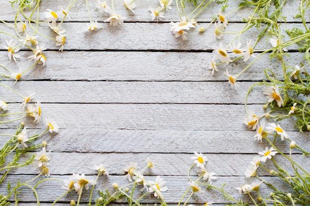 Kleine wilde weiße gänseblümchen mit einem grünen stiel auf einem alten hellen holz