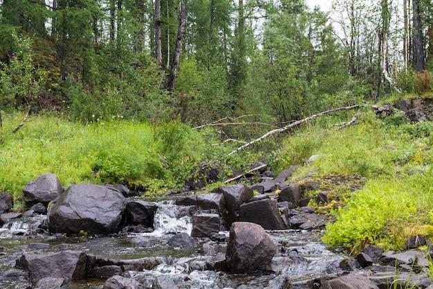 Kleiner bach irgendwo im norden. krasnojarsker territorium.