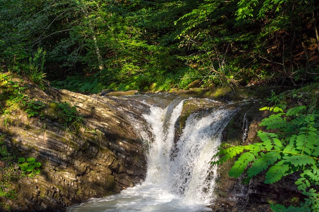 Kleiner bergwasserfall in den karpaten