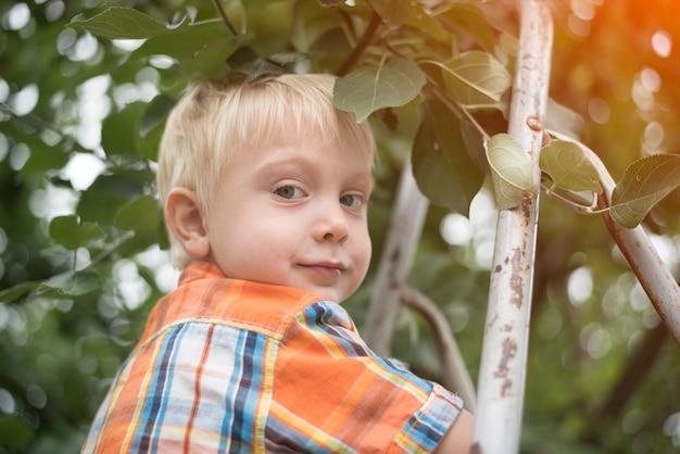 Kleiner blonder junge, der äpfel pflückt. porträt