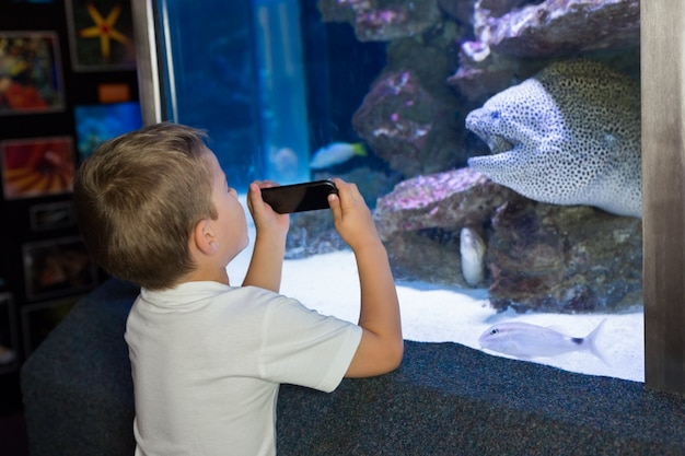 Kleiner junge, der aquarium betrachtet