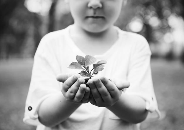 Kleiner junge, der eine pflanze hält