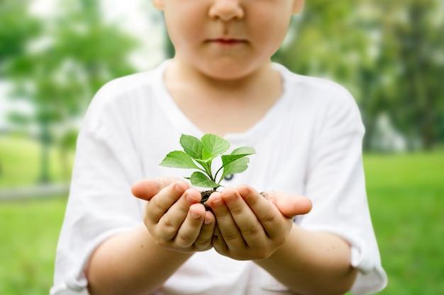 Kleiner junge, der erde und pflanze im park hält wir sind stolz darauf