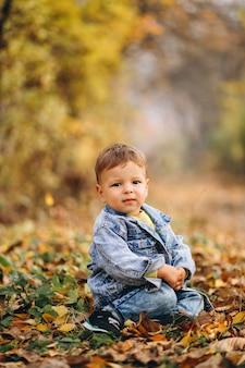Kleiner junge, der im park auf herbstlaub sitzt