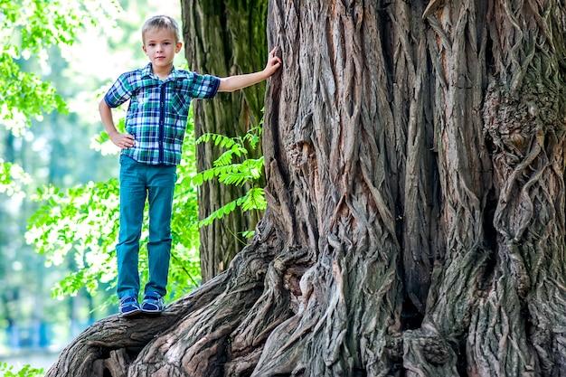 Kleiner junge, der neben einem großen stumpf eines alten baums steht.