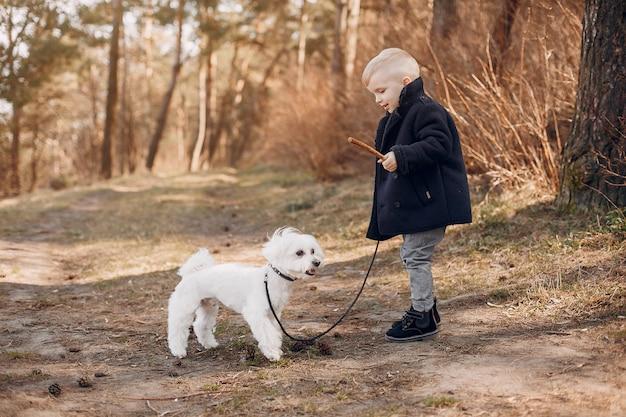 Kleiner junge in einem park, der mit einem hund spielt