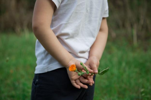 Kleiner junge mit blume in den händen