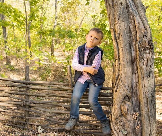Kleiner junge mit einer haltung, der auf einem rustikalen holzzaun im freien im wald sitzt und mit verschränkten armen in die kamera schaut