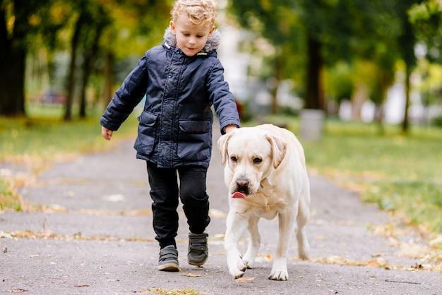 Kleiner junge spielt, rennt im herbst mit seinem hund labrador im park