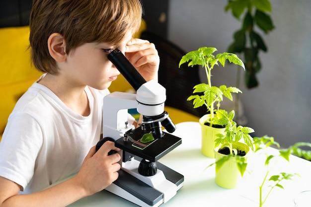 Kleiner junge studiert unter dem mikroskop pflanzen, sieht begeistert aus.