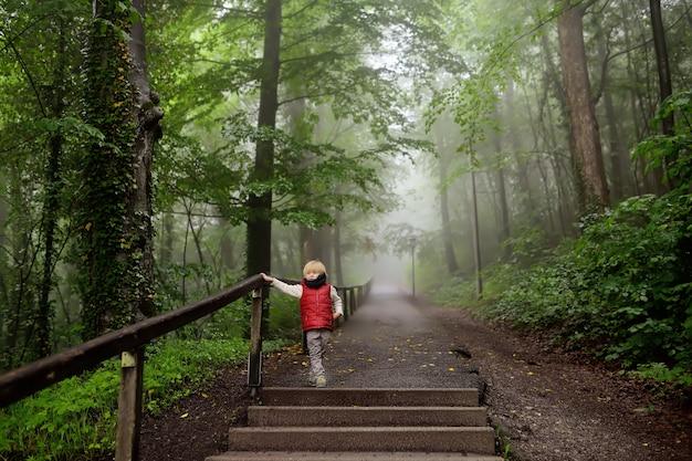 Kleiner junge während des spaziergangs im nebeligen mysteriösen park
