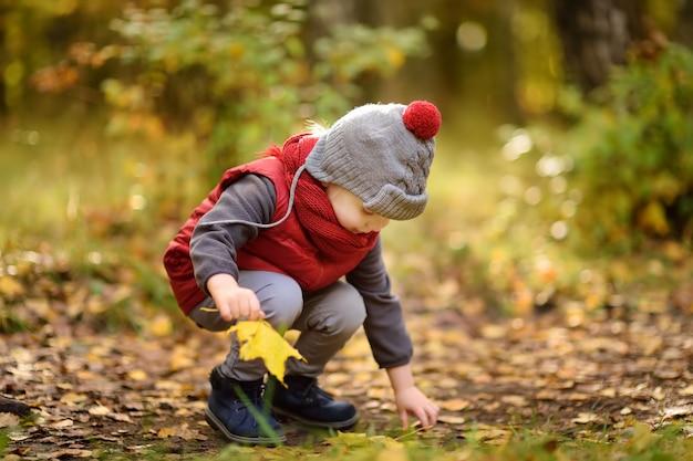 Kleiner junge während des spaziergangs im wald am sonnigen herbsttag