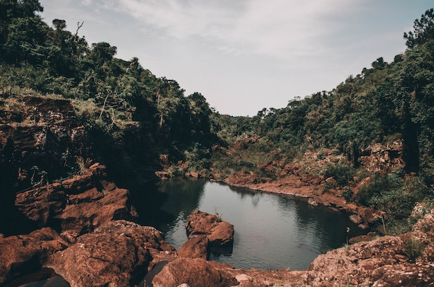 Kleiner teich, umgeben von klippen voller bäume und moos
