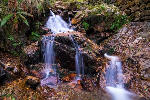 Kleiner wasserfall (genannt irusta) umgeben vom wald des aiako harriak berges im baskenland.