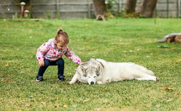 Kleines baby, das mit hund gegen grünes gras spielt