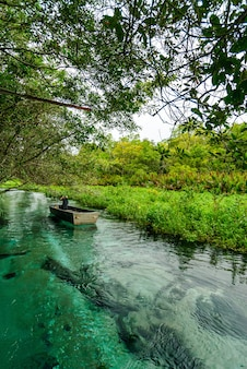 Kleines boot auf dem fluss formoso bonito mato grosso do sul brasilien