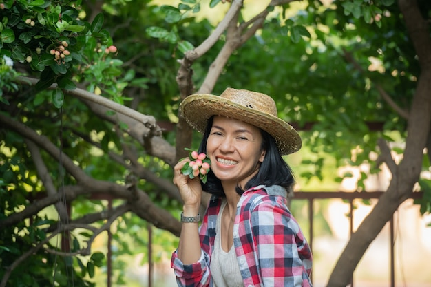 Kleines familienunternehmen. glücklich lächelnde fröhliche frau, die overalls und einen strohhut des bauernkleides trägt und die zum verkauf stehende mango-gähnenkalkgröße auswählt. mit hohem eisen- und vitamin c-gehalt.