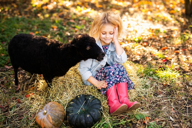 Kleines gelocktes blondes mädchen in der denimjacke und in den rosa stiefeln, die auf dem stroh sitzen und schwarze hausschafe einziehen. farmer's life-konzept