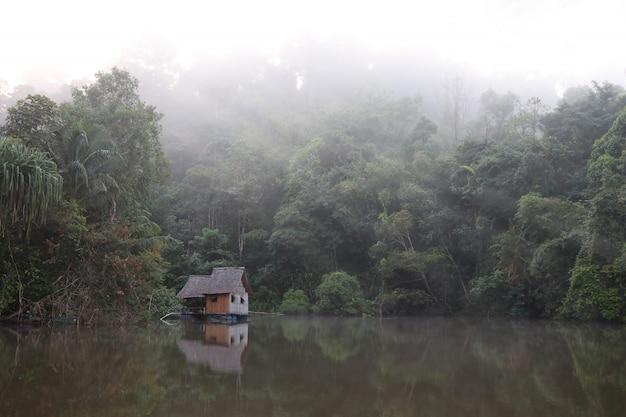 Kleines häuschen auf see im wald mit morgennebel im naturhintergrund