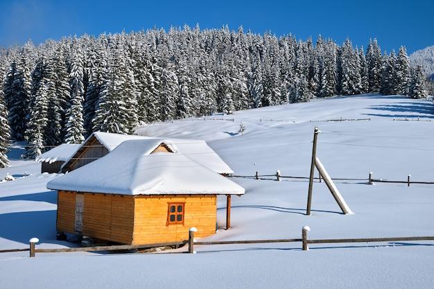 Kleines holzhaus bedeckt mit frisch gefallenem schnee, umgeben von hohen kiefern in den winterbergen.
