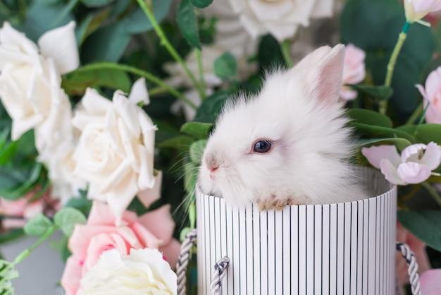 Kleines kaninchen in einem korb auf einem hintergrund von blumen. flauschiger osterhase