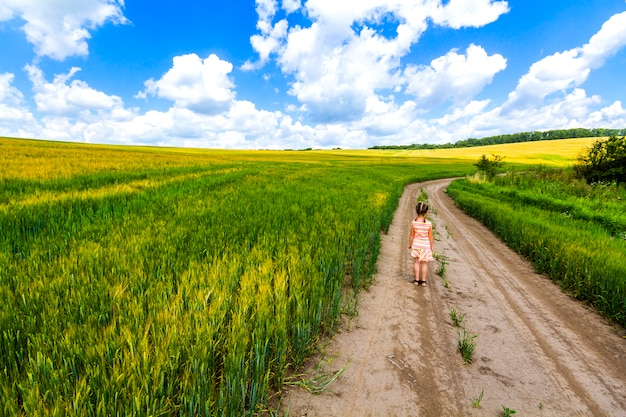 Kleines kindermädchen, das allein auf sommerschotterweg auf dem gebiet der grünen ernte geht.