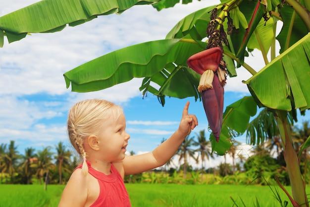 Kleines lächelndes kind, das die natur erforscht und bananenblume untersucht, die auf einem grünen baum in den tropen wächst.
