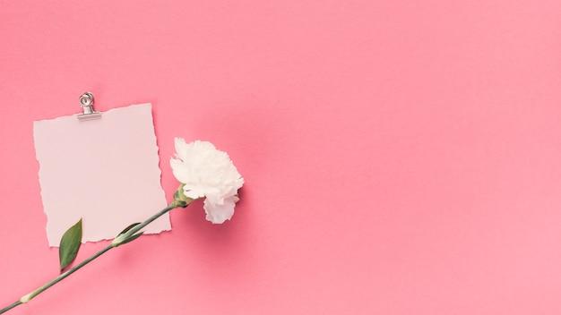 Kleines leeres papier mit blume auf tabelle